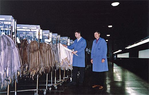 20101127 «Холофайбер» использует синтетические материалы в моделях меховых изделий «Панда». Фотография предоставлена компанией.