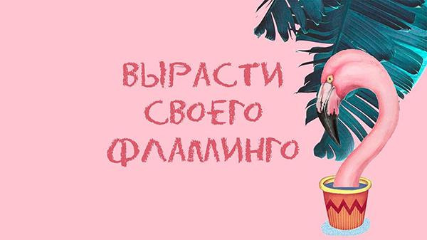 Коллекция «Вырасти своего фламинго». Фотография представлена дизайнером Анастасией Филипповой